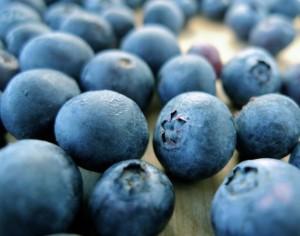 Blueberry__23651_zoom