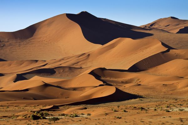 The fauna, flora and dune landscape of Wilderness Safaris' Little Kulala Tented Camp near Sossusvlei and Sesriem, Namibia