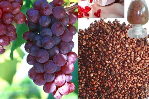 Sunt cunoscute inca din epoca romana! Vezi uimitoarele beneficii ale semintelor de struguri!